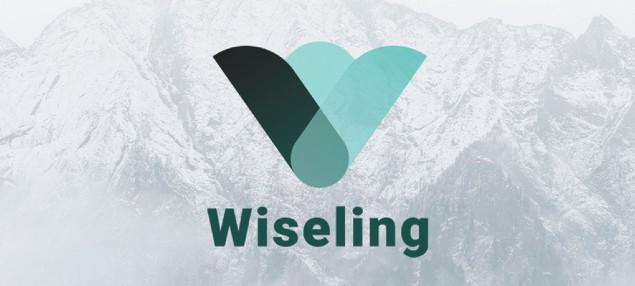 Wiseling Logo